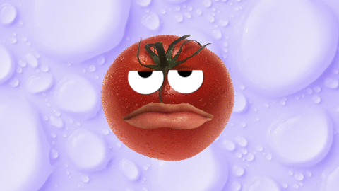 How do you fix a broken tomato? With tomato paste!