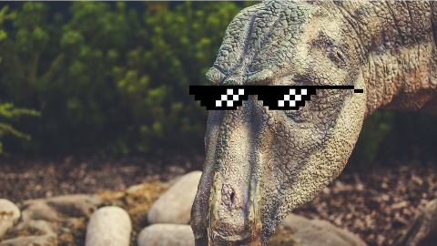 What do you call a dinosaur wearing sunglasses? A do-you-think-he-saurus!