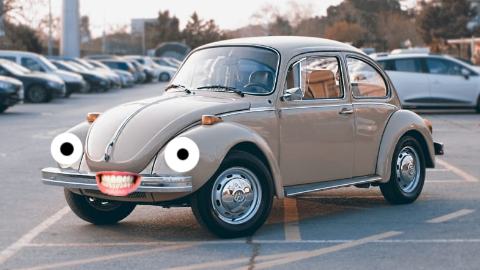 What is an entomologist's favorite car? A Volkswagen Beetle, of course!